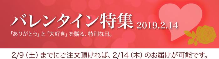 バレンタイン特集2019 お茶の井ヶ田・喜久水庵